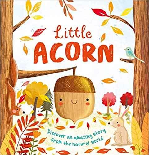 Little Acorn (IglooBooks)